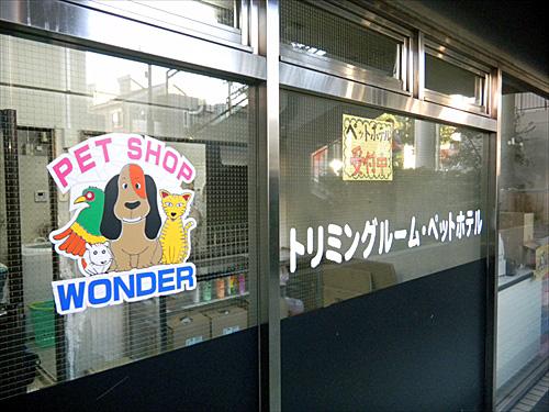 ペットショップワンダー西新井店8トリミングルーム
